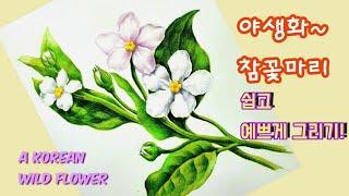 보태니컬아트/야생화/꽃그림/Botanical Art/C…