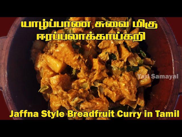 யாழ்ப்பாண சுவைமிகு ஈரப்பலாக்காய் கறி | Jaffna Style Breadfruit Curry in Tamil | Erapilakkai curry