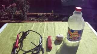 How To Make A Bird Feeder From An Oros Bottle