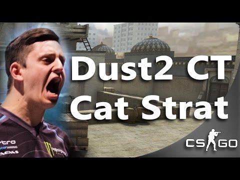 CS:GO Dust2 Cat Setup by EnVyUs