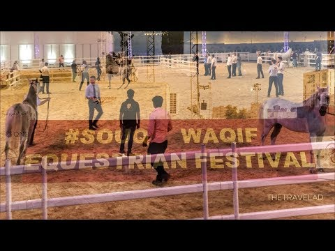 Souq Waqif Equestrian Festival 2018 | Qatar