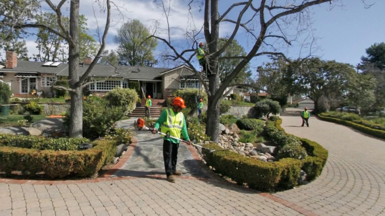 Artistic Arbor Gardens, Inc. | Lakeside, CA | Landscaping