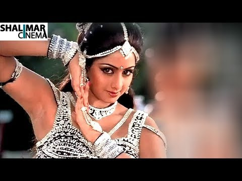 A Tribute to Sridevi  || All Time Evergreen Super Hit Video Songs Jukebox || Sridevi Video Songs