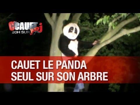 Cauet Le Panda Reste Perché Seul En Haut De Son Arbre - C'Cauet Sur NRJ