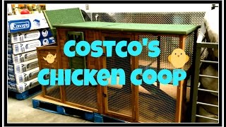 Costco's Chicken Coop~
