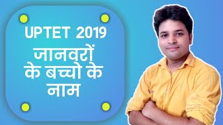 UPTET 2019 (Name Of Young Ones of Animals) जानवरों के बच्चो के नाम