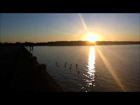 The Palmetto Trail - Lake Marion Passage (Part 10)