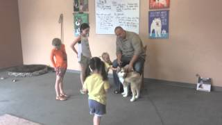 How to train a dog to stop biting, nipping, and mouthing