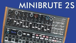 MiniBrute 2S Demo & Review! | Andrew Huang