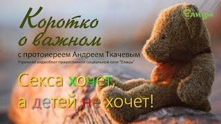 Секса хочет, а детей не хочет! о. Андрей Ткачев