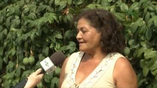 Quadro - Repórter em Campo: Maracujá BRS Pérola do Cerrado