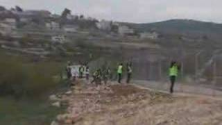 Anarchists Against The Wall. Direct Action in Beit Umar