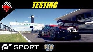 GT Sport FIA Testing