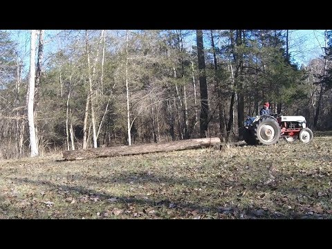 Ford 8N pulling logs