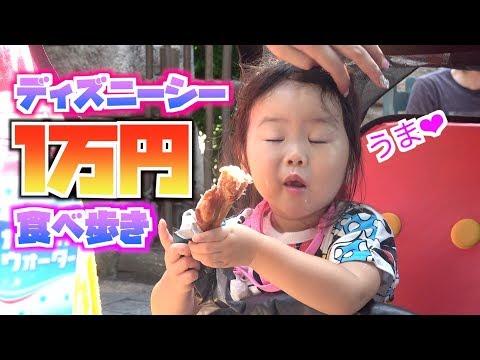 ディズニーシーで1万円食べ歩きしたら、パパが大変なことになりました