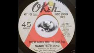 SANDI SHELDON~YOU´RE GONNA MAKE ME LOVE YOU