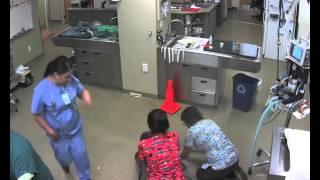 Пес сбежал из ветеринарной клиники. Женщина оседлала собаку