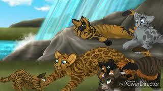 """Коты диких племен """"новое пророчество """" глава 2 ссора"""