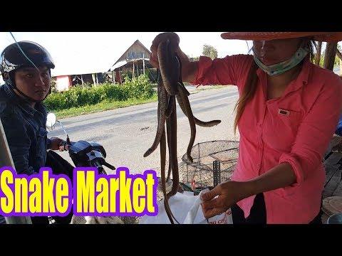 Asian Street Food Market - Vietnam Snake Market - Ran Chuot Dong Mien Tay - 동영상