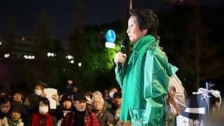 2014年1月31日 毎週金曜日恒例の「首相官邸前抗議行動」 主催:首都圏反...