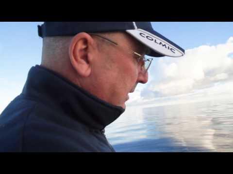 Pesca con il calamaro all'isola d'Elba