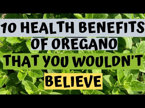 Oregano | 10 Health Benefits of Oregano