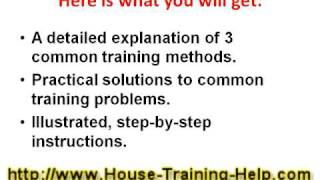House Training Dogs: Course that Works