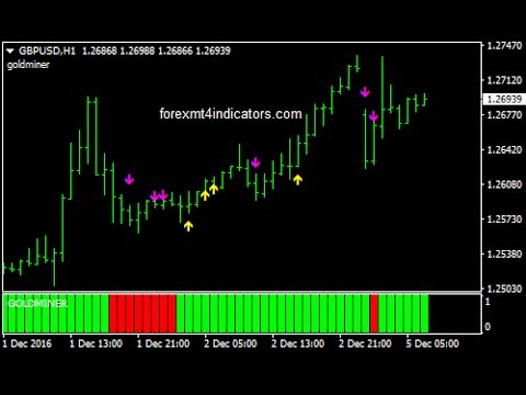 Diera the gold digger forex