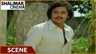 Eenadu Movie || Raja Romantic Scene || Krishna,Radhika,Rao Gopal Rao