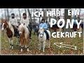 Ich habe ein Pony gekauft ♥
