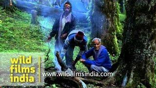 Devotees cook food in open during Nanda Devi Raj Jat Yatra