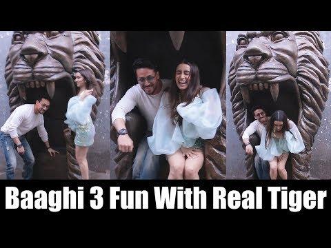 Baaghi 3 Fun With Real Tiger | Tiger Shroff, Shraddha Kapoor | Dance + Grand Finale