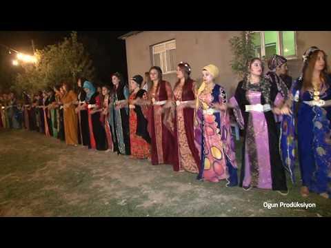 HOZAN ŞERWAN & HOZAN CENGİZ - DAWETA EŞİRA QEŞURİ ELEMUNE : SEGAVİ | OGUN PRODÜKSİYON |