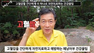 고혈압 간단하게 자연치료하는 페낭어부 건강꿀팁(feat.고혈압 원인)