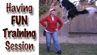 Having Fun Training Session: Canine Freestyle Practice