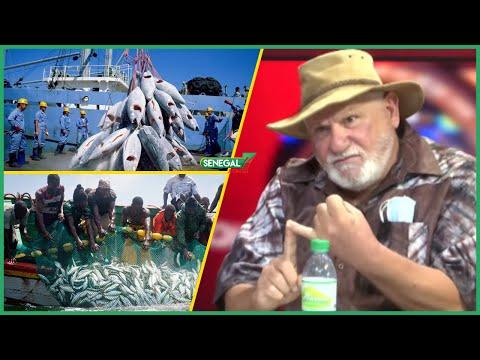 """Ali Haidar sur les accords de pêche avec l'EU: """"Dagne Ma Xéx Ma Diogué Fi Ndax Dama Annulé Ay..."""""""
