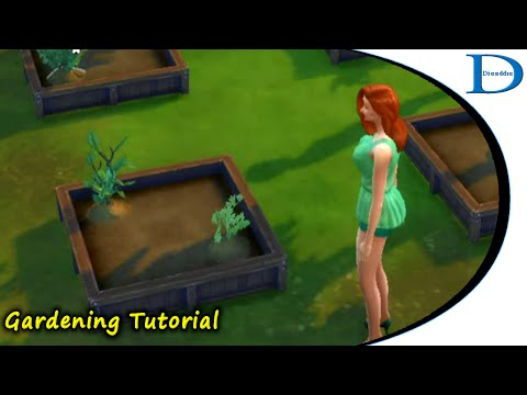 The Sims 4 - Gardening Tutorial Series - 01 Starting Out