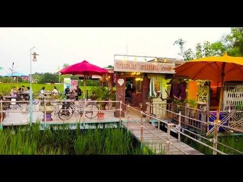 FIELD SHINE Cafe' มหาสารคาม [4K]