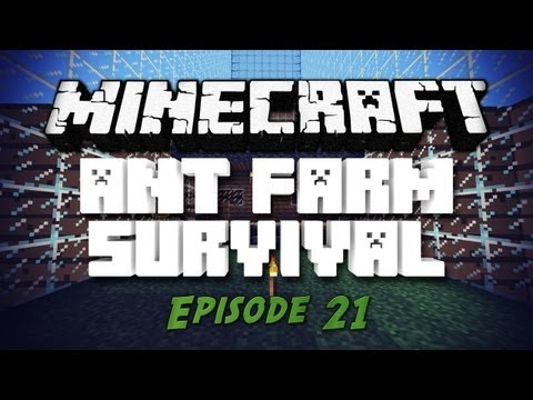 "Ant Farm Survival - ""Home Furnishing"" - Ep.21"