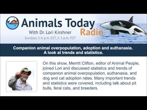 Companion animal overpopulation, adoption and euthanasia. A look at trends and statistics.