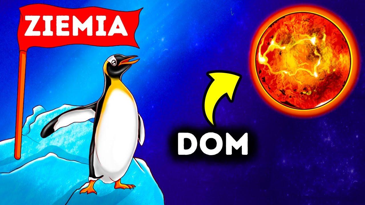 Download Pingwiny posiadają związek chemiczny występujący tylko na Wenus