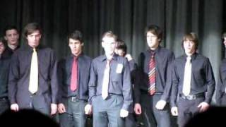 Great boys choir (Odličen fantovski zbor)