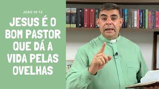 Jesus é o bom pastor que dá a vida pelas ovelhas - Jo 10-12