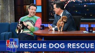 Rescue Dog Rescue with Jason Sudeikis