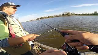 видео Способы ловли берша