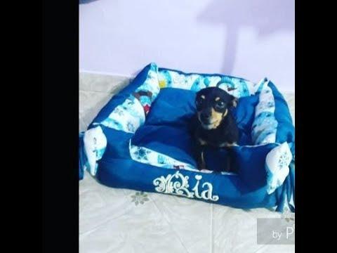 COMO FAZER CAMINHA PARA PET COM ZÍPER / ROUPAS PET/ CURSO ONLINE DE MODA PET