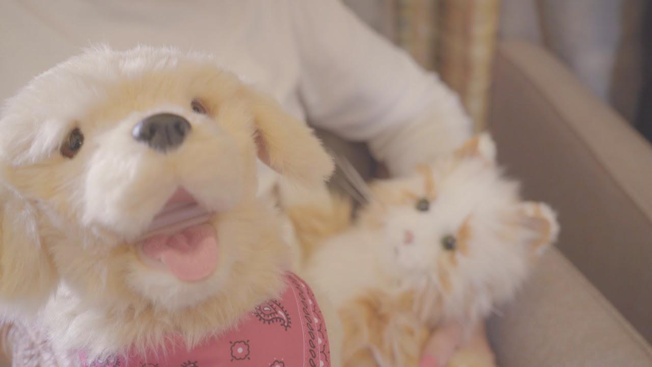 Joy for All Pets   Companion Pets – Ageless Innovation LLC