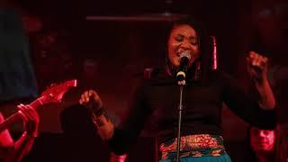 GNY- Festival Vibrations Caraïbes Trans-Océaniques (ed.2011)