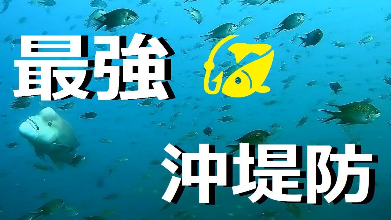 日本最強の沖堤防にカメラを沈めてみると魚の楽園だった!【水中映像】