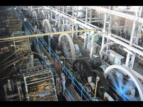 Join the Industrial Revolution!!! Gula Java 12, Gondang Baru, Central Java, Indonesia